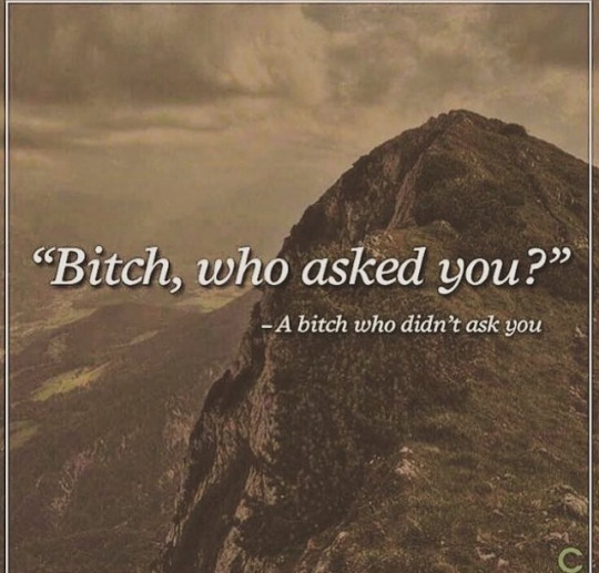 Bitch who asked you? - A bitch who didn't asked you